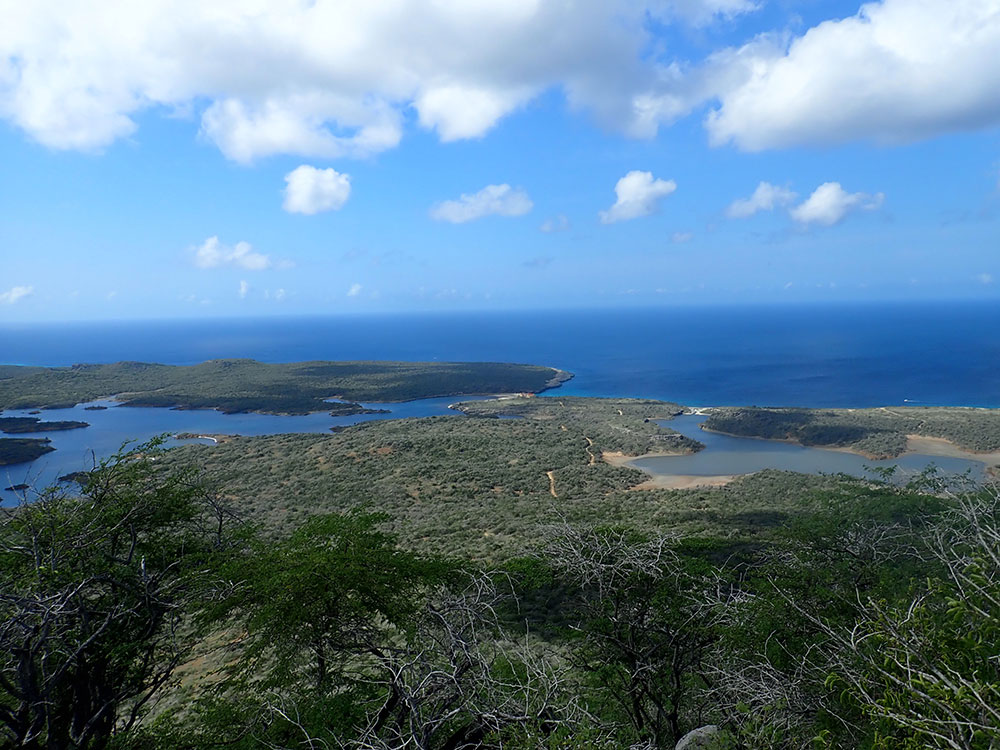 view brandaris bonaire